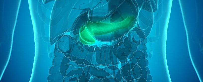 Implantable Artificial Pancreas Delivers Insulin